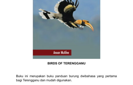 BIRDS OF TERENGGANU - KULIT TEBAL (RM35.00)